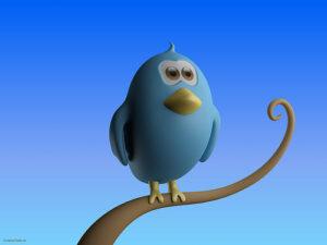 twitter account toronto