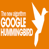The Humming Bird Update and its effect to current SEO strategies